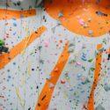 Climb Hires New COO